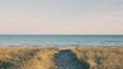Coastal Equities FINRA Arbitration Leads to Award for Advisor